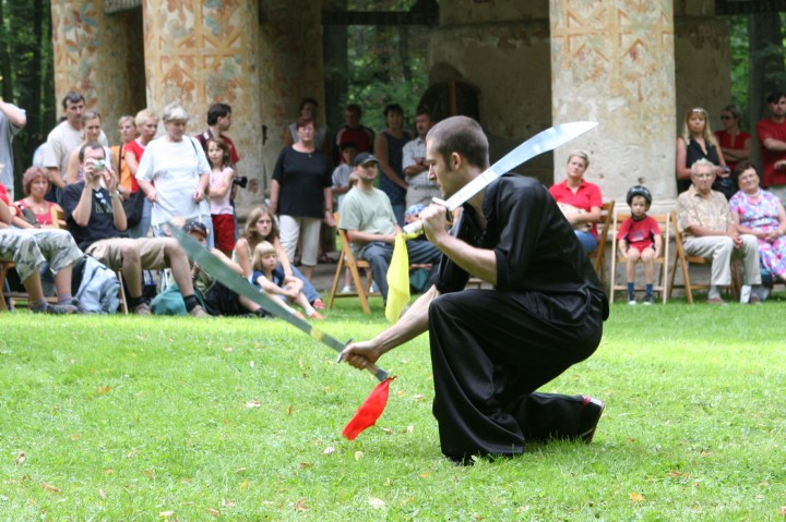 martial arts performance